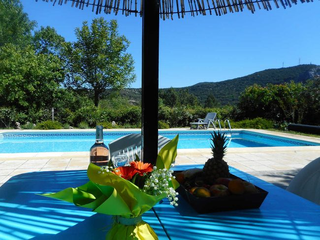 Amazing In The Heart Of The Cévennes, Holiday Home, Private Pool, Dog Allowed